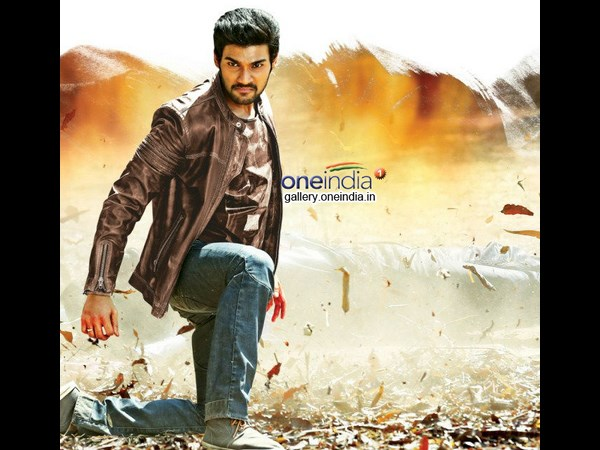 Vinayak's Alludu Seenu Gets Superb Opening At Box Office