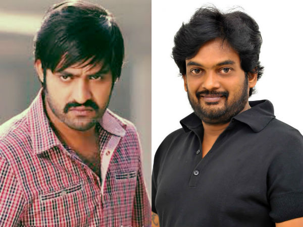 Costly Chases for NTR, Puri film