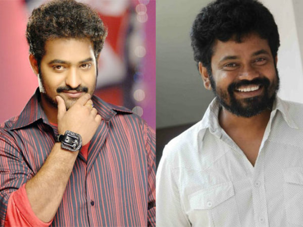 Top heroines to paly cameo in Sukumar NTR's Movie Item Song