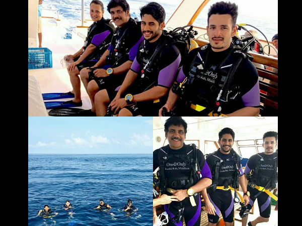 Nagarjuna and Akhil, Naga Chaitanya Caught in Maldives