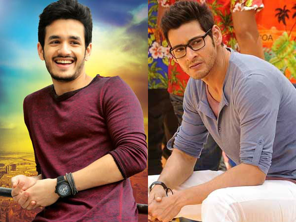 Vamshi Paidipally Ditches Akhil For Mahesh Babu