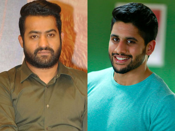 Clash between Jr NTR and Naga Chaitanya