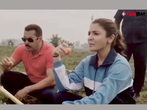 Salman Khan-starrer Sultan's title track finally out