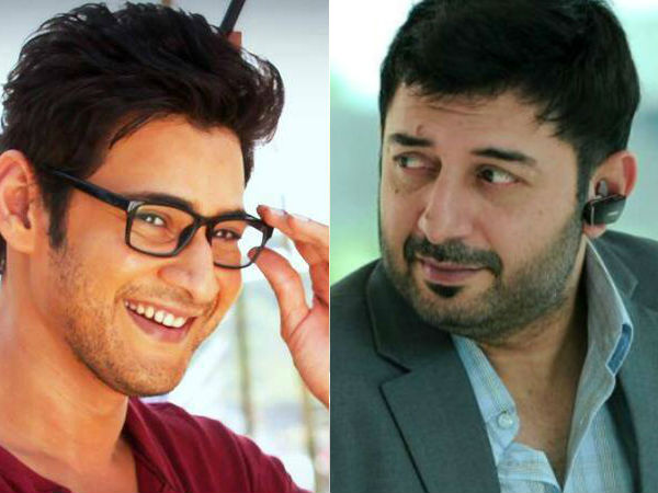 Mahesh Babu Gave Shock To Aravind Swamy