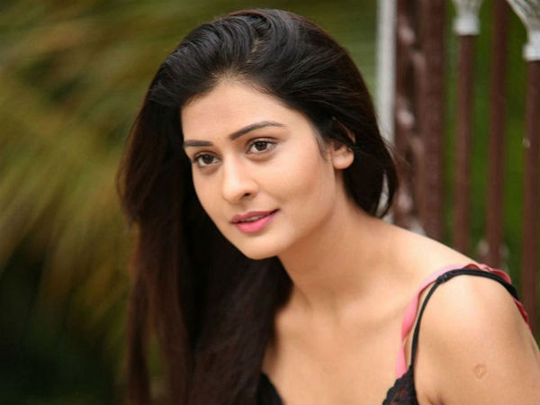 RX100 fame Payal Rajput to perform Item song in BellamKonda Srinivas movie.