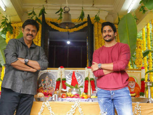 Interesting roles for Venkatesh and Naga Chaitanya in Venky Mama movie