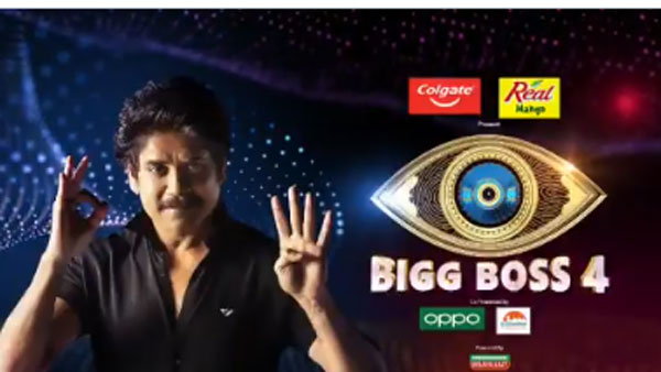 Bigg Boss Telugu Elimination: 12వ వారం వెళ్లిపోయేది ఎవరు.. సర్వేలో బయటపడ్డ టైటిల్ విన్నర్!