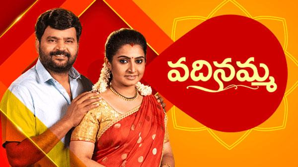 Vadinamma Serial June 21st Episode: మళ్ళీ కష్టాల సుడిగుండం.. కరెంట్ కూడా లేకుండా రాత్రంతా!