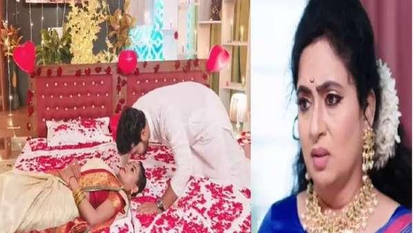 Vadinamma Serial July 31 Episode: దమయంతి దెబ్బకి మైండ్ బ్లాంక్.. హార్ట్ ఎటాక్ ప్లాన్ తో శోభనం మటాష్!