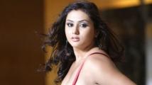 https://telugu.filmibeat.com/img/2020/03/namitha5-1584498412.jpg