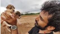 https://telugu.filmibeat.com/img/2020/09/aadi-pinisetty-puppy-1600249640.jpg