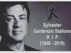 Sylvester Stallone Death Hoax Viral Media
