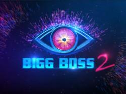 Bigg Boss Telugu 2 First 10 Day Review
