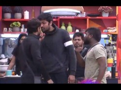 Bigg Boss2 Telugu 101 Day Update Kaushal Fires On Housemate As Dogs