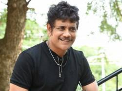 Nagarjuna Akkineni Clarity On Karan Johar Akhil Movie