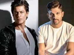 Shah Rukh Khan Comments On Allu Arjun Goest Viral