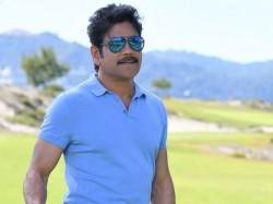 Akkineni Nagarjuna Will Act In Bollywood Raid