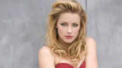Tesla Ceo Responded Elon Musk On Johnny Depp Comments Over Relation With Amber Heard