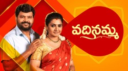 Vadinamma Serial Today Episode June 22nd Highlights And Preview